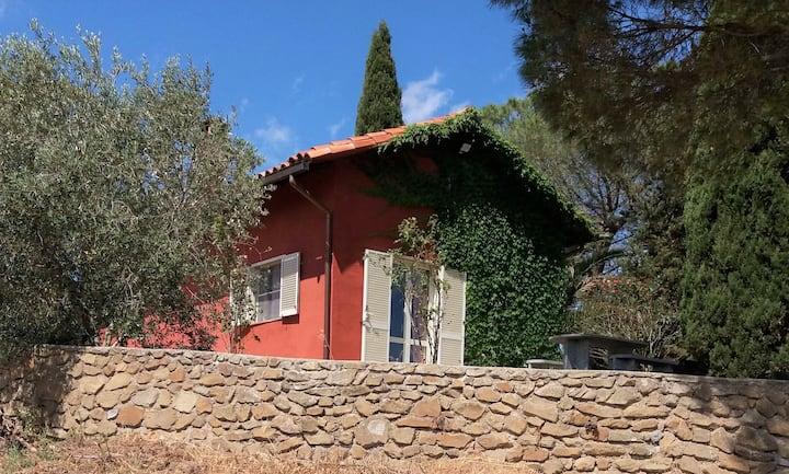Häuschen in den Weinbergen-Casettina tra le vigne