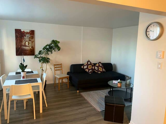 Bright & cozy 2 bedroom apt. 12 min from downtown