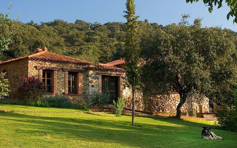 Casa Tortuga - Molino río Alájar - Alájar - Naturstuga
