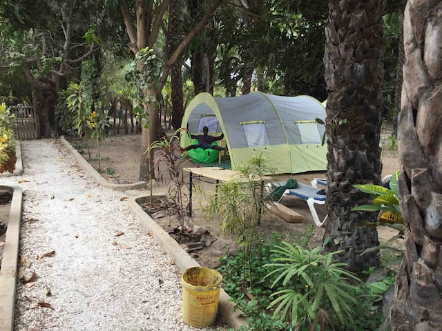 Contany Counda 6 persons tent