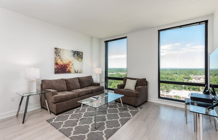 Beautiful and Homey 1BR in Reston, VA!