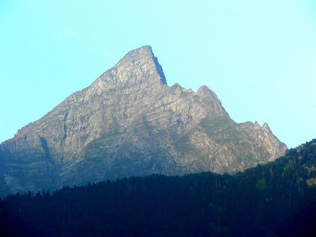 Soso Gogrichiani