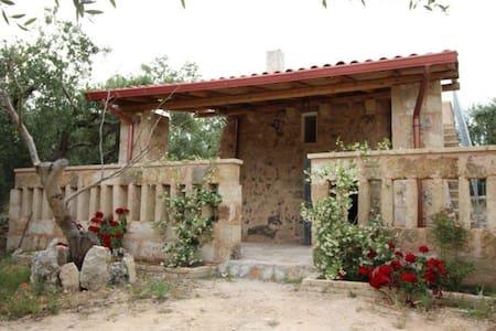 Pajara con ampio giardino vicino al mare - Montesardo - Villa
