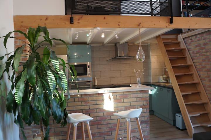 Duplex atypique, calme, clim, wifi, terrasse 30m²
