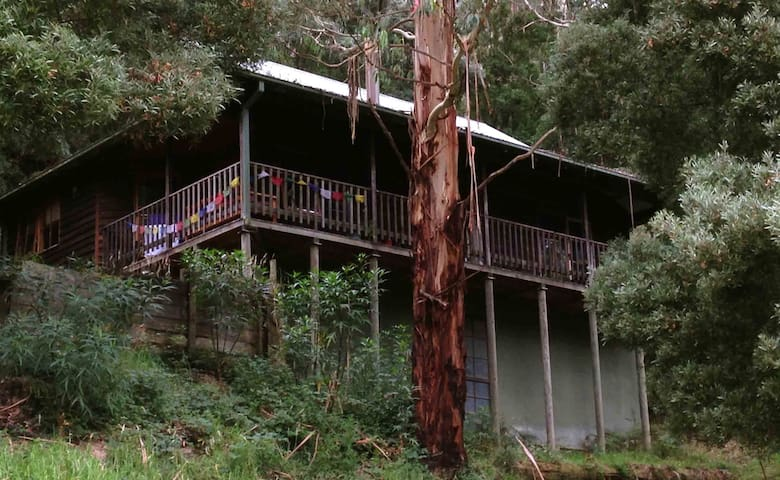 Tall Trees Retreat Blackwood Cottage - Apollo Bay - House