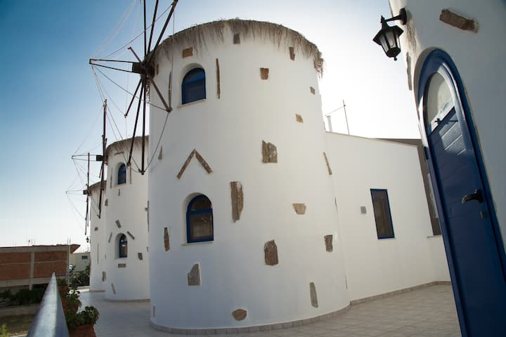 WindMill Apartment1