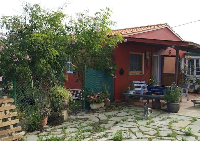 Country House Los Cernícalos, Trapiche-Arucas - Arucas - Dům