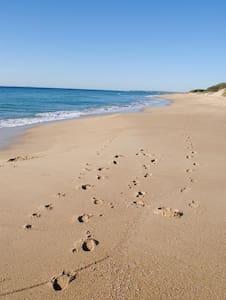 Beautiful Beach Home Sunshine Coast - Buddina