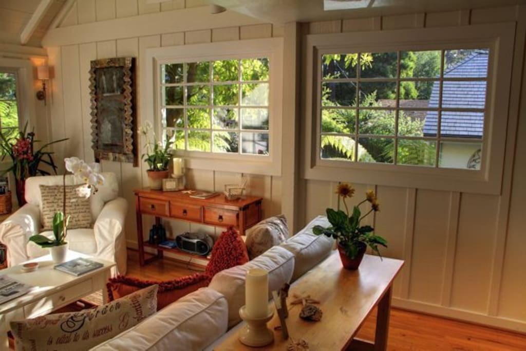 Lots of windows in the living room provide lots of natural light.