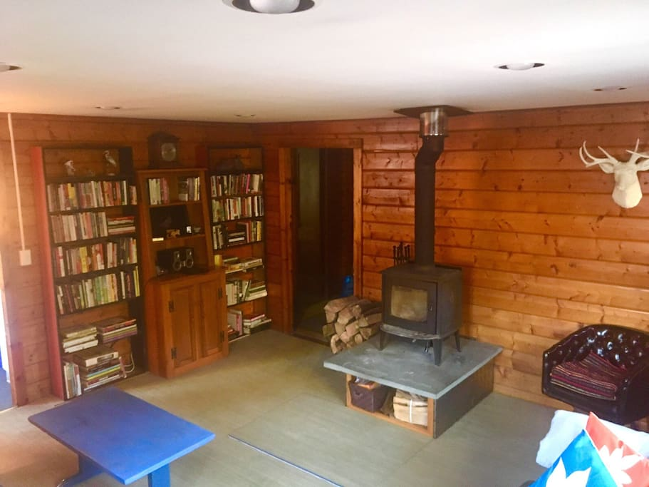 There's no TV in the cabin, but help yourself to the books, plug your music into the speakers, or just stare at the fire.