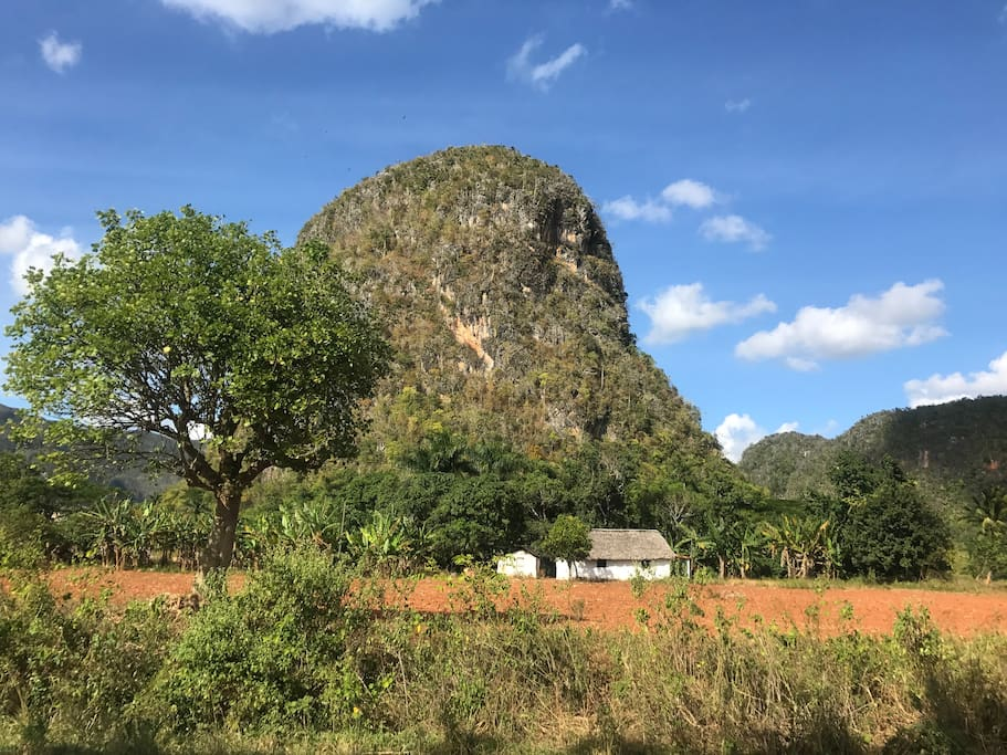 We arrange bicycle tours through the Vinales Valley