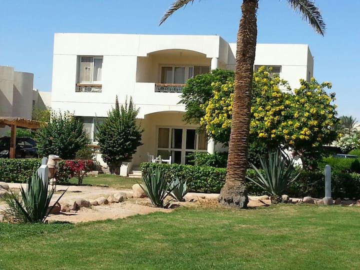 Amazing beach front villa in Sharm.