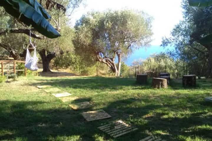 Casa vacanza,relax in villa a Marina di Camerota