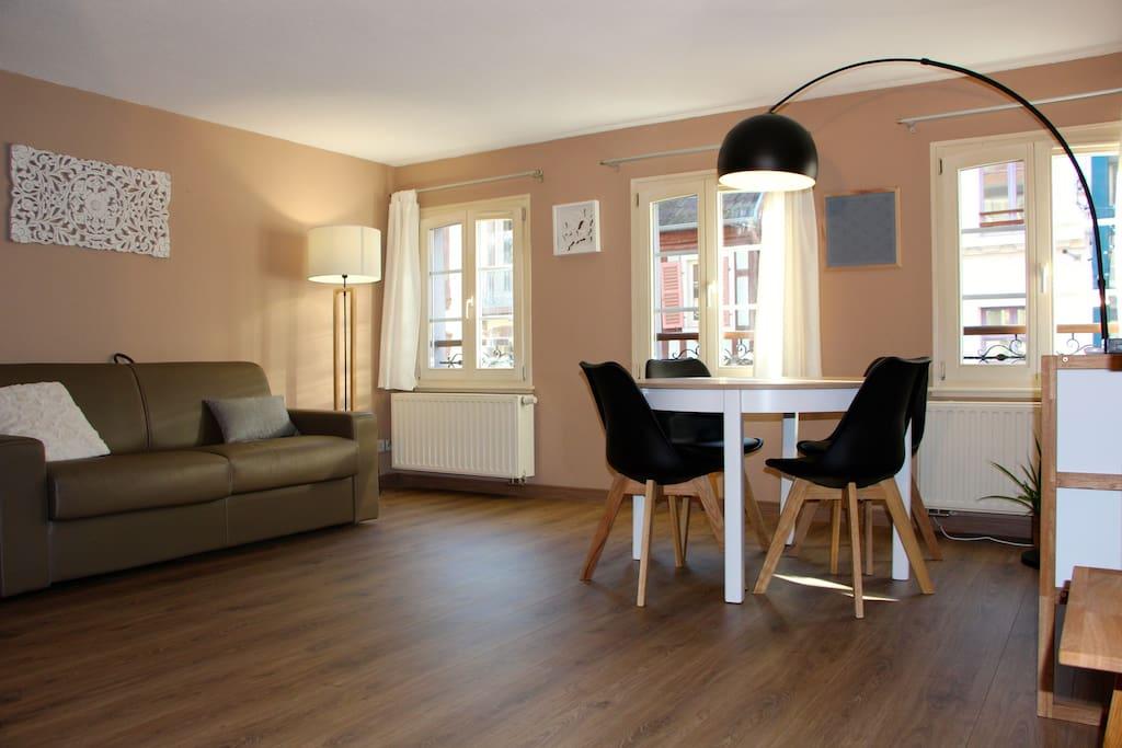 hypercentre city center parking appartements louer colmar alsace champagne ardenne. Black Bedroom Furniture Sets. Home Design Ideas