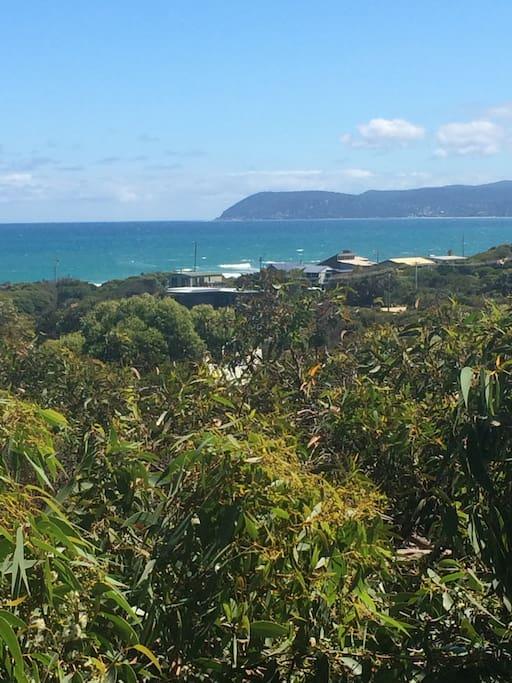Lorne View