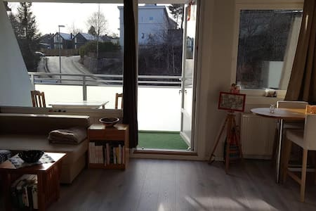 Studio apartment, quiet area by the river - 奧斯陸 - 公寓