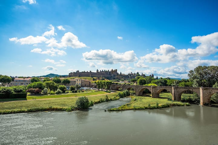 Appart Charmant à Carcassonne! Accès Spa + Linge de Lit Inclus