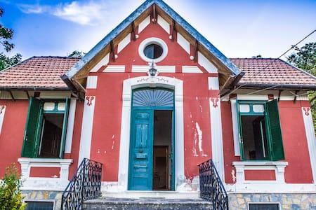 Villa Carmen, B&B letterario immerso nella natura