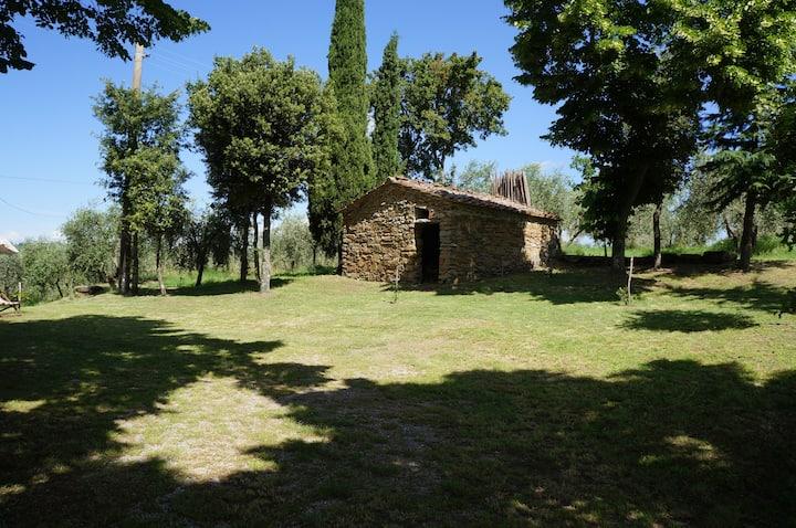 A quiet farmhouse in Monte San Savino
