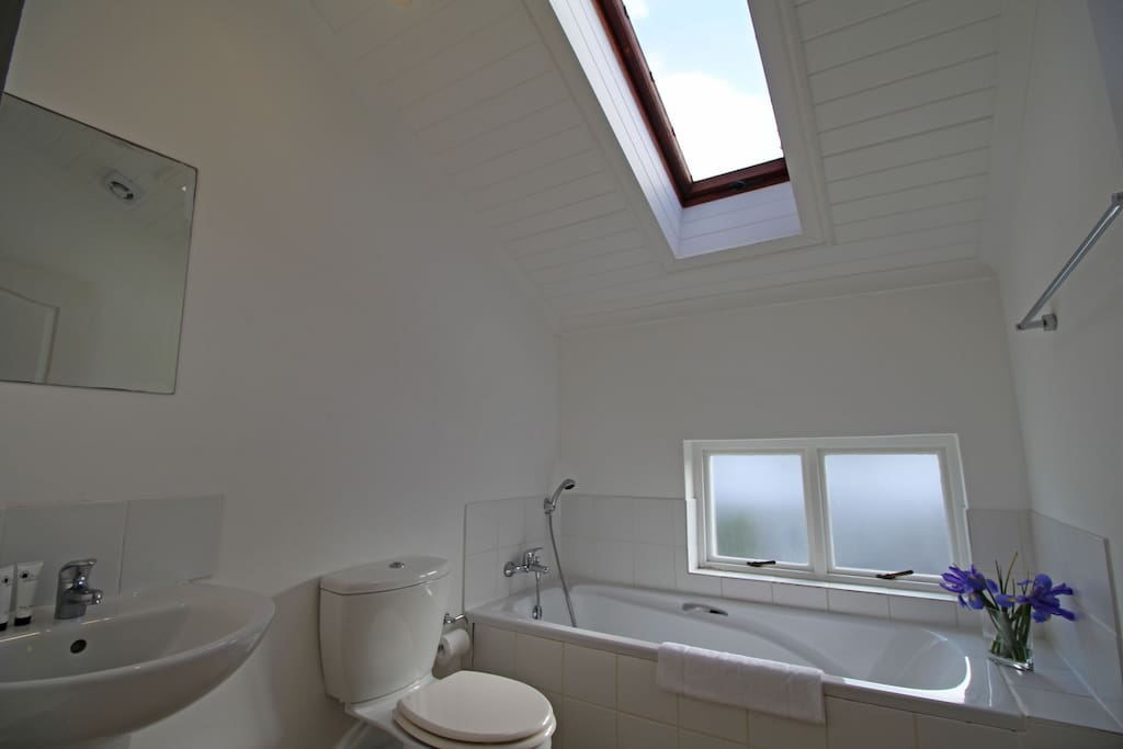Up-stairs Bathroom with Sky-light, basin and toilet
