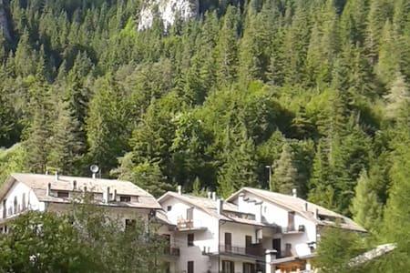 boschi, palaghiaccio e piste da sci - Apartment