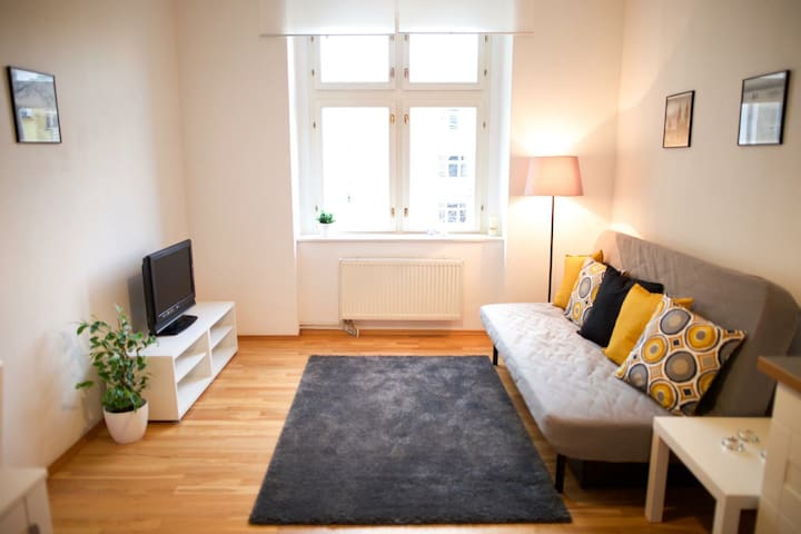 Cozy apartment near city centre