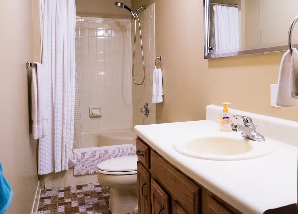 Bathroom with sit in tub and shower.
