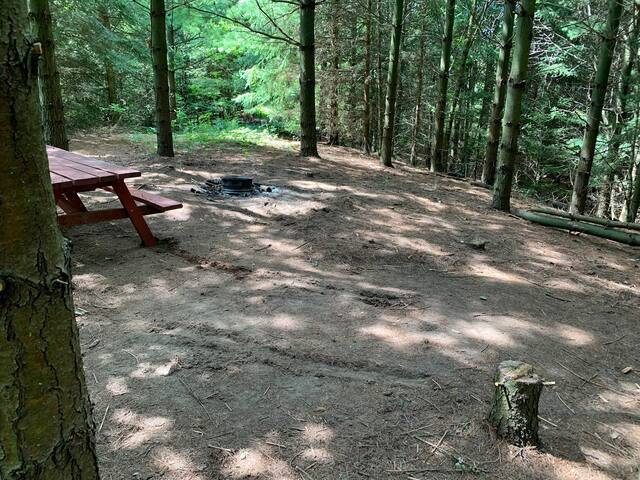 Backwoods Camping 2 in the GTA - Forested Area