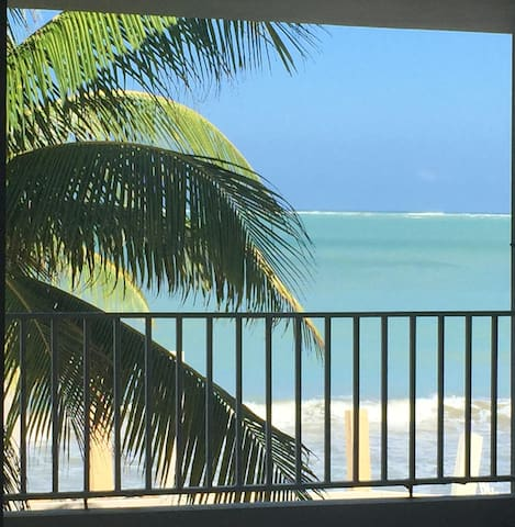 2 Bed Room  - Oceanfront Apartment - Luquillo - Leilighet