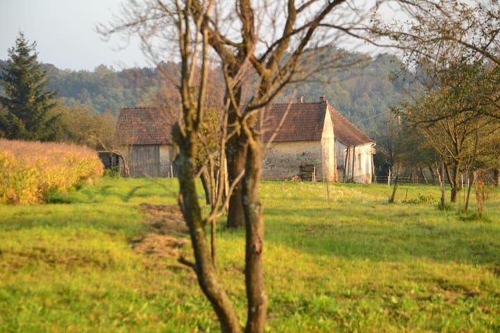 Nani Mári House - Kondorfa - House