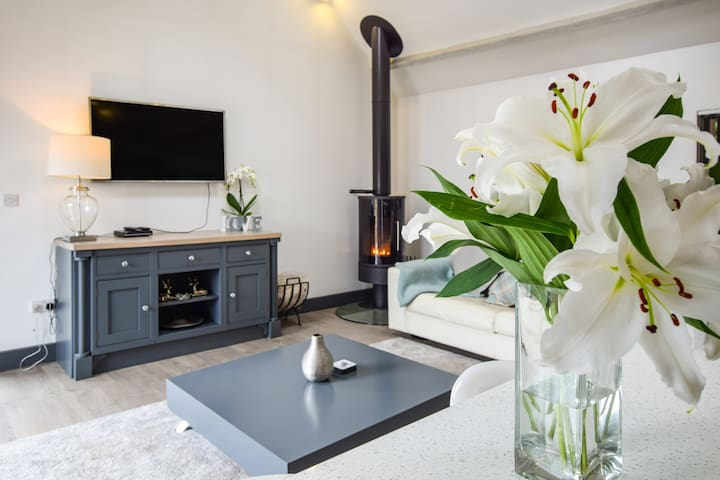 The Living Area showing woodburner and TV