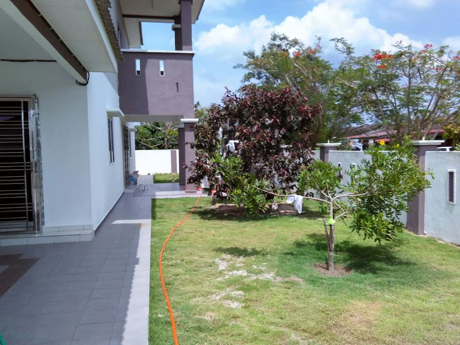 Tropical fruit trees for you to enjoy in the compound.