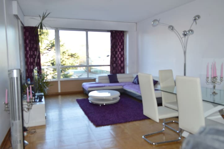 Spacious flat very close to the UN and to the lake