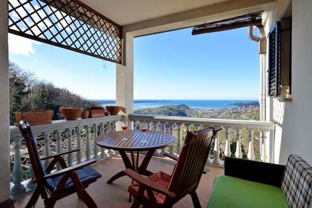 Amazing View Terrace Apartment  - Seča - 公寓