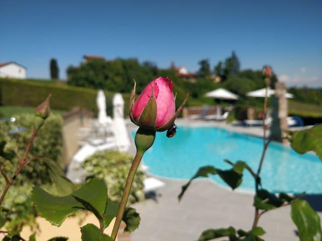Loft Arneis,cozy & elegant with pool and terrace