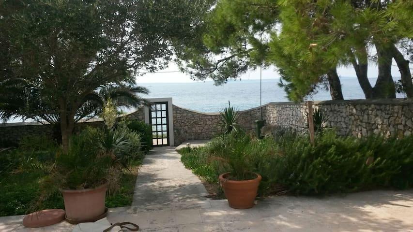 Bougainvillea house island Silba - Zadar - Hus