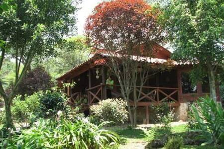 Cuarto en Cabaña de Madera Xico