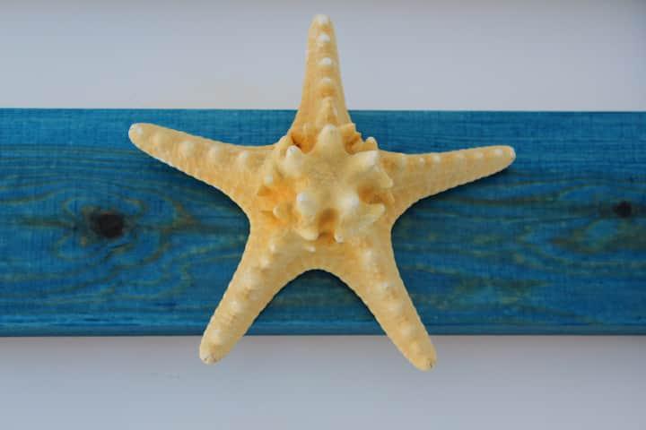 Стелламарина частного спуска к морю