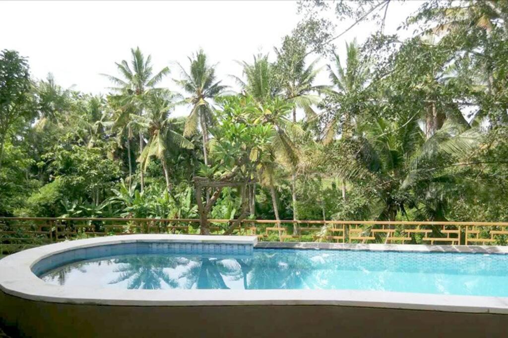 Georgeous Rice Padi River View Private Pool Villa