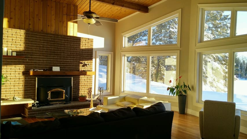 Cottage With All Comforts of Home - Emsdale - Cabin