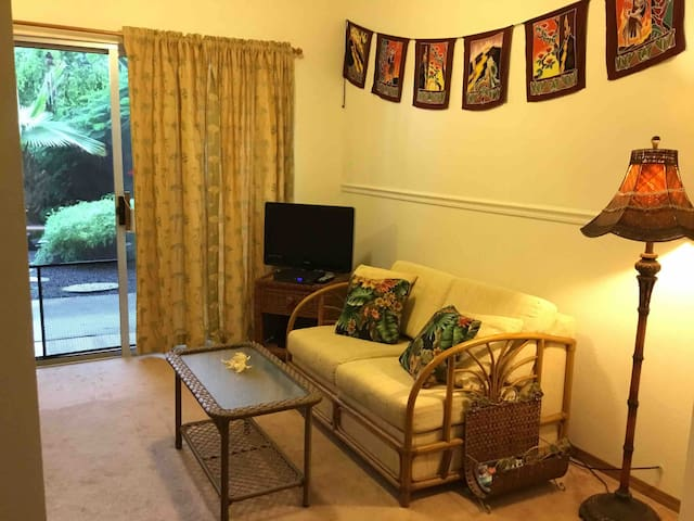 Living room, sofa with pull out single bed.