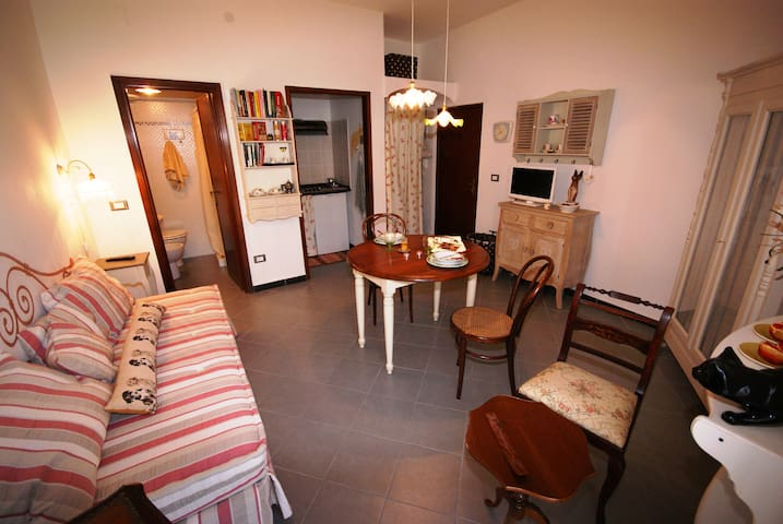 New loft on the beach | Ap103 - Santo Stefano al Mare - Apartment