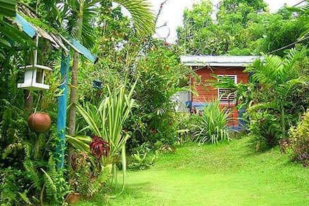 Mikuzi (i'm cozy) Top Cottage - Port Antonio