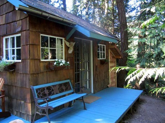 Forest Haven ~ Hot Tub Under The Stars - Salt Spring Island