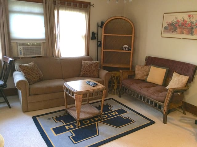 Comfy 1 Bdrm Apt, Close to Stadium & Downtown - Ann Arbor - Apartment