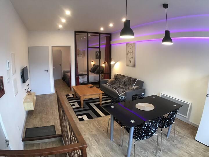 BEST# Appartement moderne centre Lacaune
