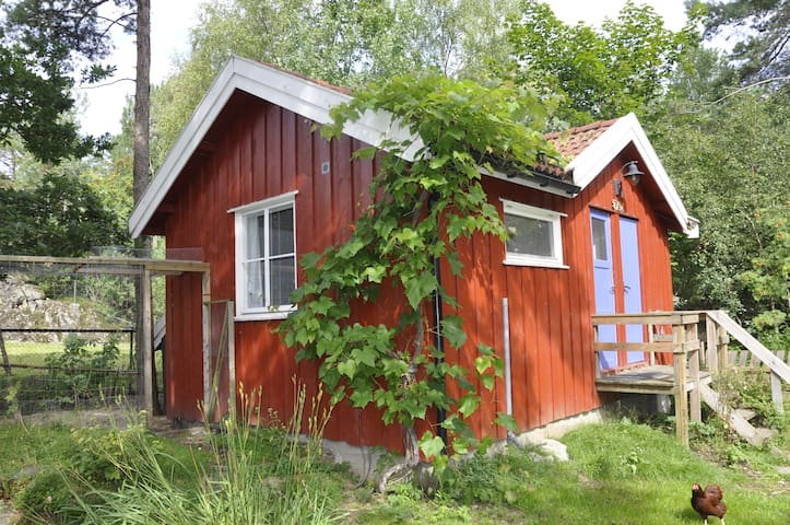 Cozy cabin with bathroom and kitchenette + wifi - Son - Houten huisje