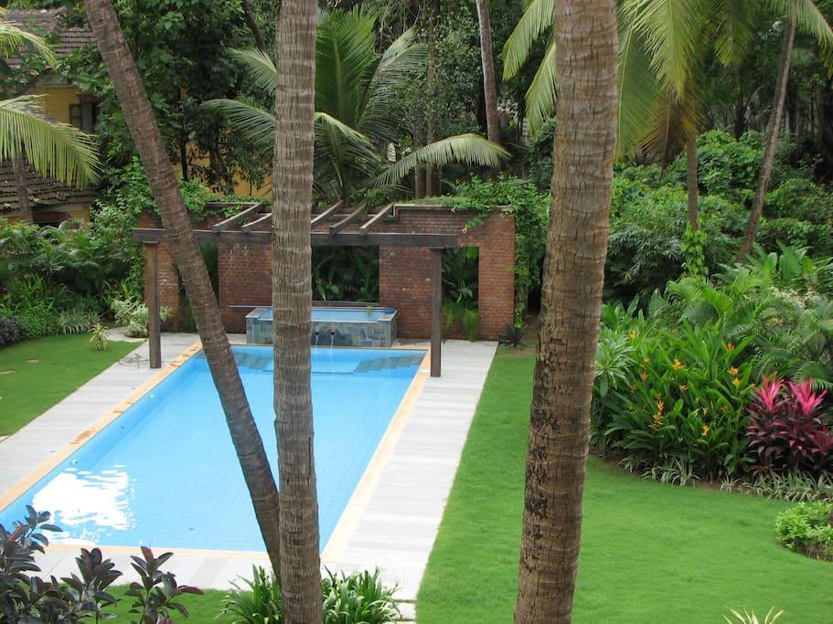 Full length pool and garden