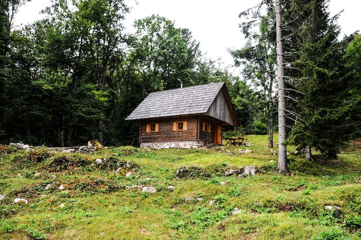 Mountain Chalet  at Vogar above Bohinj lake