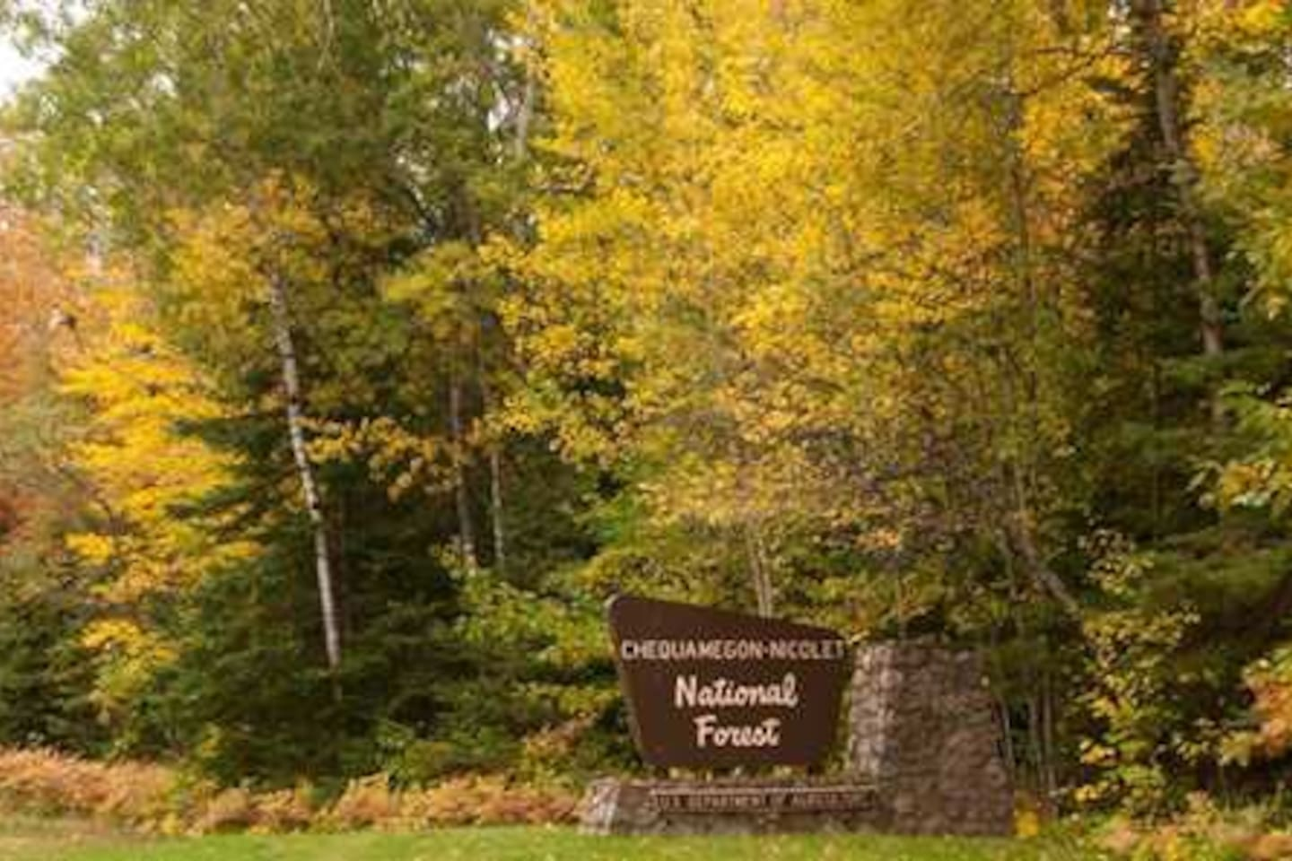 Nicolet National forest is 50 feet from the front door